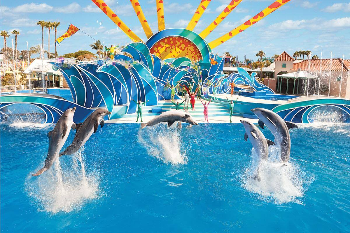 San Diego Discount Tickets Seaworld San Diego Zoo